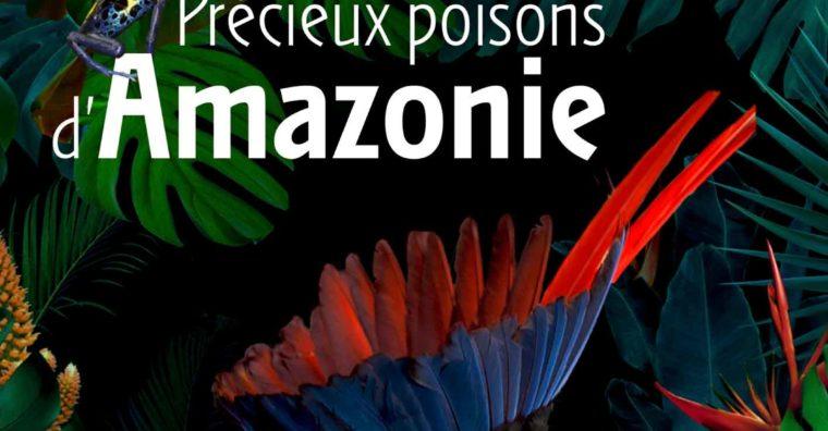 Illustration de l'article Exposition – Précieux poisons d'Amazonie