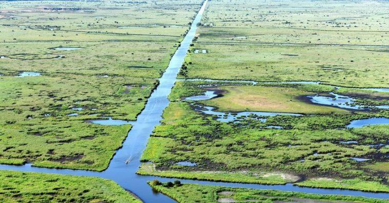 Illustration de l'article Ecologie : Quand Saint-Nazaire se mobilise pour préserver ses bassins naturels