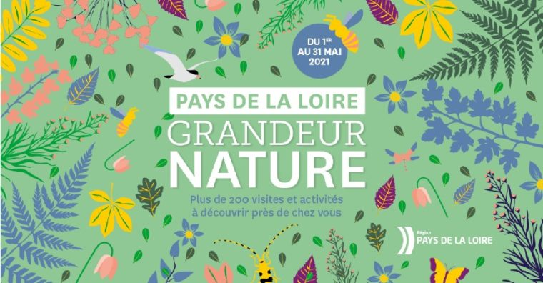 Illustration de l'article Sorties : Pays de la Loire « Grandeur Nature »