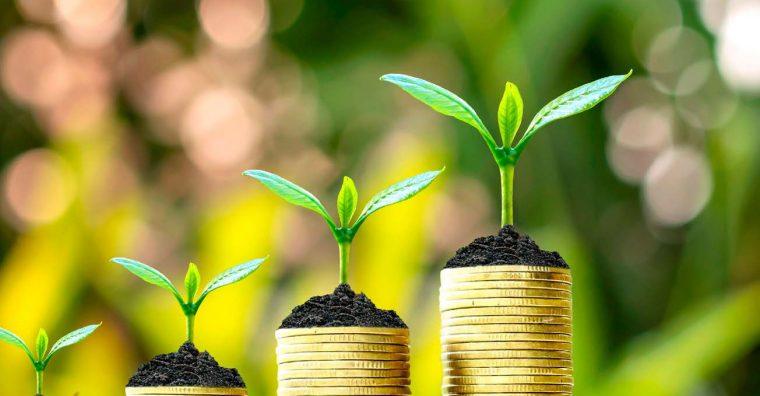 Illustration de l'article PME : quels financements pour ses projets de transition écologique ?