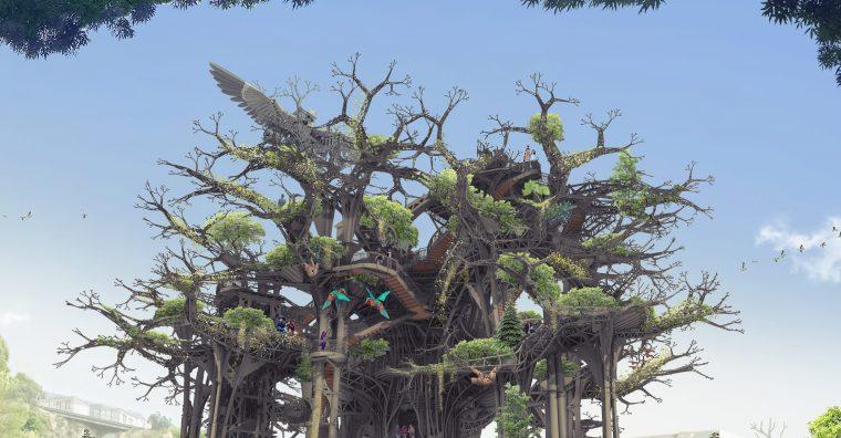 Illustration de l'article L'arbre aux hérons, un outil d'attractivité attendu