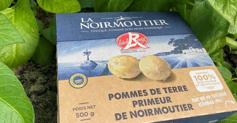 Illustration de l'article La pomme de terre de Noirmoutier se met au vert