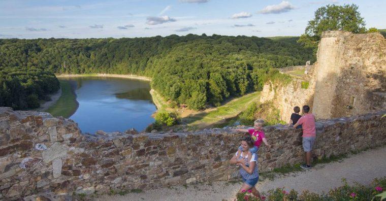 Illustration de l'article Forêt de Mervent : le numérique en renfort de la randonnée